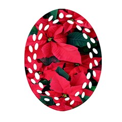 Red Poinsettia Flower Ornament (oval Filigree) by Mariart