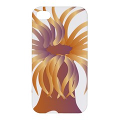 Sea Anemone Apple Iphone 4/4s Hardshell Case by Mariart