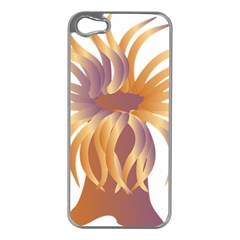 Sea Anemone Apple Iphone 5 Case (silver) by Mariart