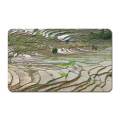 Rice Fields Terraced Terrace Magnet (rectangular) by Nexatart