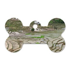 Rice Fields Terraced Terrace Dog Tag Bone (two Sides) by Nexatart
