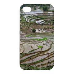 Rice Fields Terraced Terrace Apple Iphone 4/4s Premium Hardshell Case