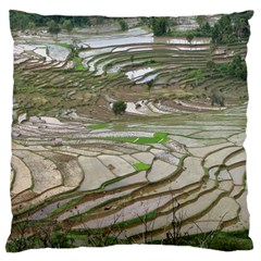 Rice Fields Terraced Terrace Large Cushion Case (two Sides) by Nexatart