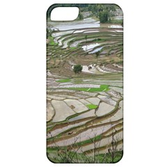Rice Fields Terraced Terrace Apple Iphone 5 Classic Hardshell Case