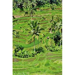 Greenery Paddy Fields Rice Crops 5 5  X 8 5  Notebooks