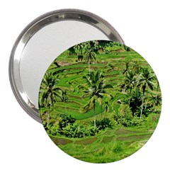 Greenery Paddy Fields Rice Crops 3  Handbag Mirrors by Nexatart