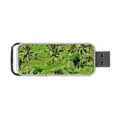 Greenery Paddy Fields Rice Crops Portable Usb Flash (two Sides)