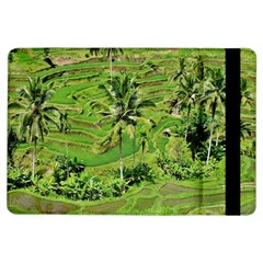 Greenery Paddy Fields Rice Crops Ipad Air Flip by Nexatart