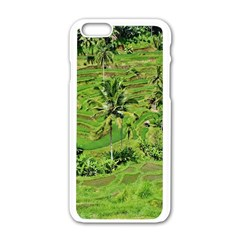 Greenery Paddy Fields Rice Crops Apple Iphone 6/6s White Enamel Case