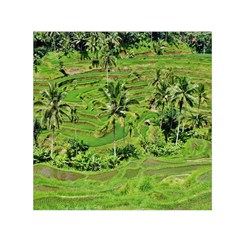 Greenery Paddy Fields Rice Crops Small Satin Scarf (square) by Nexatart