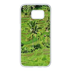 Greenery Paddy Fields Rice Crops Samsung Galaxy S7 Edge White Seamless Case by Nexatart