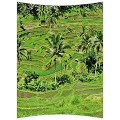 Greenery Paddy Fields Rice Crops Back Support Cushion by Nexatart