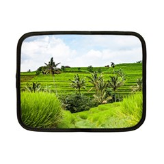 Bali Rice Terraces Landscape Rice Netbook Case (small)  by Nexatart