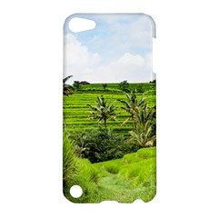 Bali Rice Terraces Landscape Rice Apple Ipod Touch 5 Hardshell Case by Nexatart