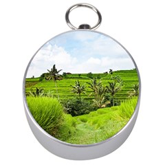 Bali Rice Terraces Landscape Rice Silver Compasses by Nexatart