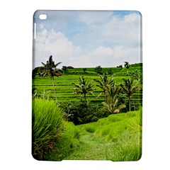 Bali Rice Terraces Landscape Rice Ipad Air 2 Hardshell Cases by Nexatart