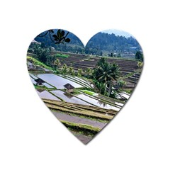 Rice Terrace Rice Fields Heart Magnet by Nexatart
