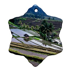 Rice Terrace Rice Fields Ornament (snowflake)