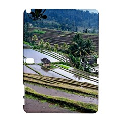 Rice Terrace Rice Fields Galaxy Note 1 by Nexatart
