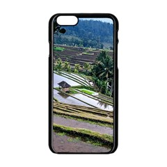 Rice Terrace Rice Fields Apple Iphone 6/6s Black Enamel Case by Nexatart