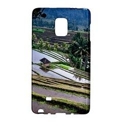 Rice Terrace Rice Fields Galaxy Note Edge by Nexatart