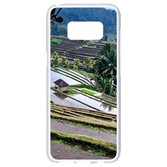 Rice Terrace Rice Fields Samsung Galaxy S8 White Seamless Case by Nexatart