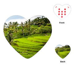 Rice Terrace Terraces Playing Cards (heart)  by Nexatart