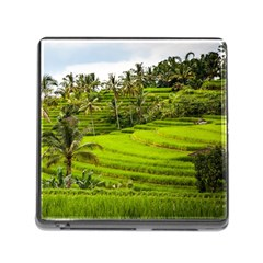 Rice Terrace Terraces Memory Card Reader (square) by Nexatart
