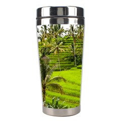 Rice Terrace Terraces Stainless Steel Travel Tumblers by Nexatart