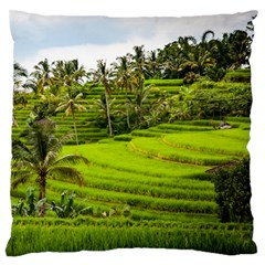 Rice Terrace Terraces Large Flano Cushion Case (two Sides)