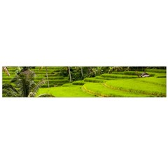 Rice Terrace Terraces Flano Scarf (large) by Nexatart