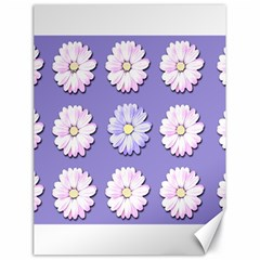 Daisy Flowers Wild Flowers Bloom Canvas 18  X 24