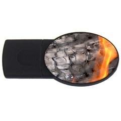 Fireplace Flame Burn Firewood Usb Flash Drive Oval (4 Gb)