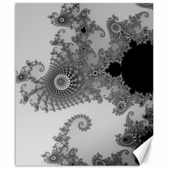 Apple Males Mandelbrot Abstract Canvas 20  X 24   by Nexatart