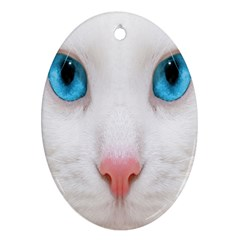 Beautiful White Face Cat Animals Blue Eye Oval Ornament (two Sides) by Mariart