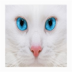 Beautiful White Face Cat Animals Blue Eye Medium Glasses Cloth by Mariart