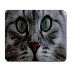 Cat Face Eyes Gray Fluffy Cute Animals Large Mousepads by Mariart