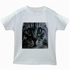 Cat Face Eyes Gray Fluffy Cute Animals Kids White T Shirts