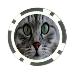 Cat Face Eyes Gray Fluffy Cute Animals Poker Chip Card Guard (10 Pack)