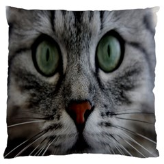 Cat Face Eyes Gray Fluffy Cute Animals Large Cushion Case (two Sides) by Mariart