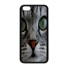 Cat Face Eyes Gray Fluffy Cute Animals Apple Iphone 5c Seamless Case (black) by Mariart