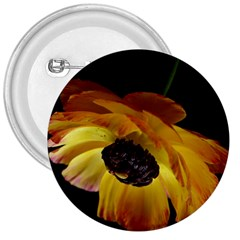 Ranunculus Yellow Orange Blossom 3  Buttons by Nexatart