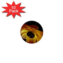 Ranunculus Yellow Orange Blossom 1  Mini Buttons (10 Pack)  by Nexatart