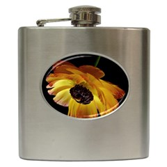 Ranunculus Yellow Orange Blossom Hip Flask (6 Oz) by Nexatart