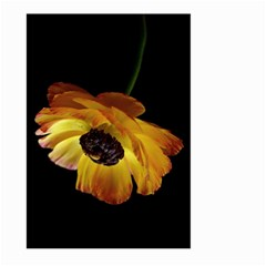 Ranunculus Yellow Orange Blossom Large Garden Flag (two Sides)