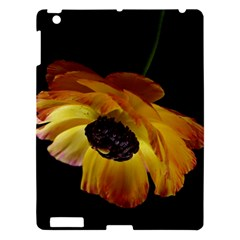 Ranunculus Yellow Orange Blossom Apple Ipad 3/4 Hardshell Case by Nexatart