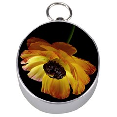 Ranunculus Yellow Orange Blossom Silver Compasses by Nexatart