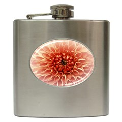 Dahlia Flower Joy Nature Luck Hip Flask (6 Oz) by Nexatart