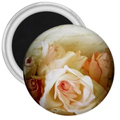 Roses Vintage Playful Romantic 3  Magnets by Nexatart