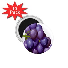 Grape Fruit 1 75  Magnets (10 Pack)  by Mariart